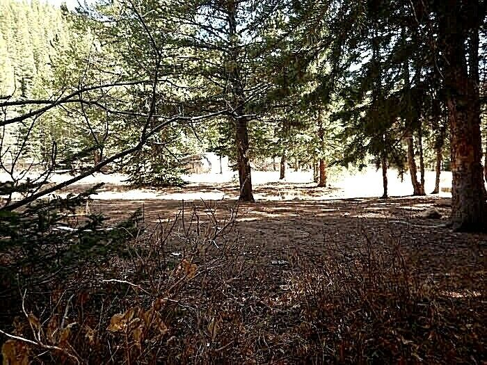 The G. Find Mine PARK County COLORADO 20 ACRE Land PLACER GOLD MINING CLAIM  - $1,550.00