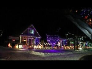 DO YOU STILL HAVE CHRISTMAS LIGHTS UP BUT WANT THEM DOWN??