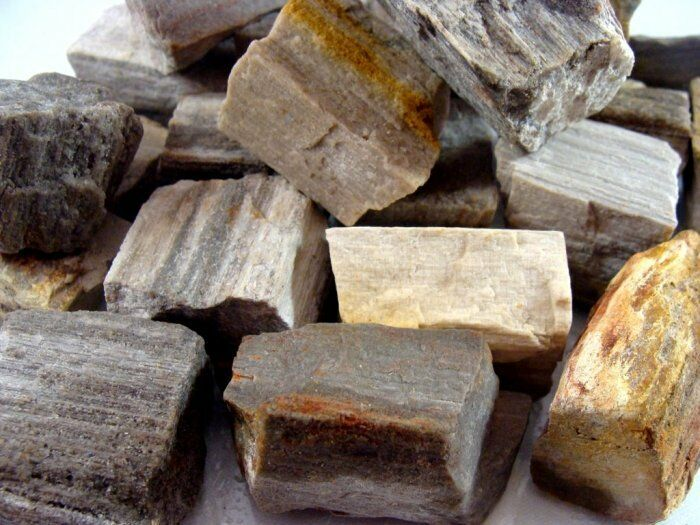 Perfect Sized - PETRIFIED WOOD Rough Rocks - 3 Pounds - Tumbler