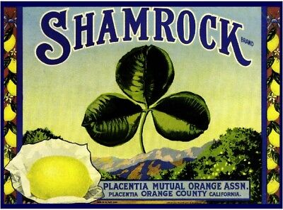 Placentia Shamrock St. Patrick's Day Lemon Citrus Fruit Crate Label Art - St Patrick's Day Art