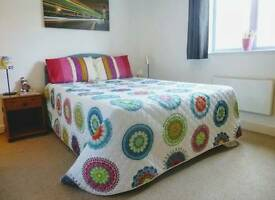 Very nice double room available near Stratford and Canning Town with Garden