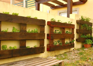 Garden Pallet Projects