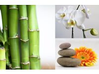 Bamboo Natural Therapy for high quality massage in Central London WC1
