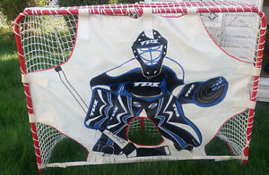 hockey net with Goalie