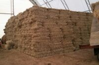 Timothy hay bales for sale