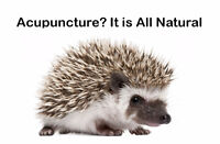 Benefit of Acupuncture in Chronic Illness