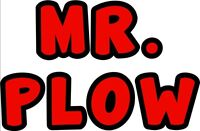 Mr. Plow Snow Clearing / Removal