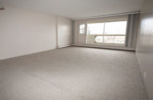 Large 1 Bedroom Downtown Apartment (Le Jardin) Edmonton Edmonton Area image 6