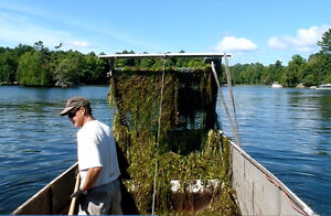 aquatic weed removal services Kingston Kingston Area image 5