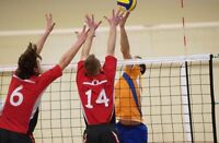 GUELPH ADULT CO-ED WINTER INDOOR VOLLEYBALL LEAGUES
