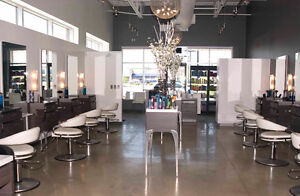 Hairdresser and Esthetician position available Kitchener / Waterloo Kitchener Area image 1