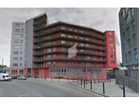 Very Nice and Fully furnished 1 bedroom flat in Bow, E3 ***DSS welcome with a guarantor***