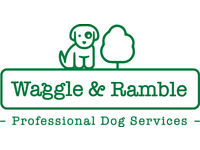 Professional Dog Walking in Brighton & Hove