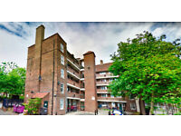 Gorgeous 2 bed, 1 bath Flat - Bow, E3