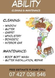 Gutter Cleaning Repair Installation & More
