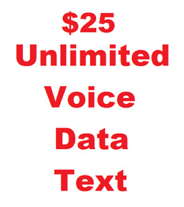 $25 Unlimited Voice/Data/Text Phone Plan