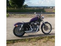 Harley Davidson sportster Vance and hindes short shot's