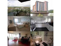 1 Double Bedroom in a large Flat in Cardiff Bay