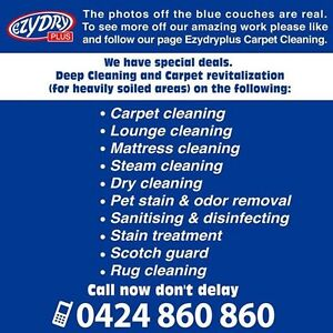 sydneys best carpet cleaning Bankstown Bankstown Area Preview