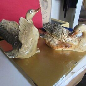 Pair Of Duck Ornaments BRAND NEW