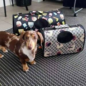 Dog Carrier - Two Sizes
