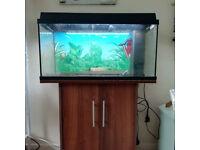 Juwel Aquarium (Fish Tank) and Cabinet