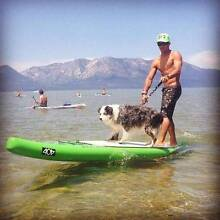 """404 12'6""""  AIR RACE Stand Up Paddle Board  Inflatable SUP Currumbin Waters Gold Coast South Preview"""