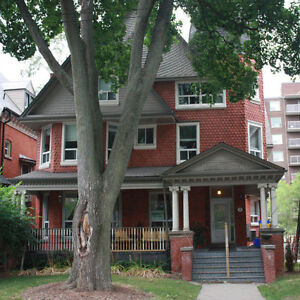 all inclusive, beautiful 1 bedroom basement apartment available