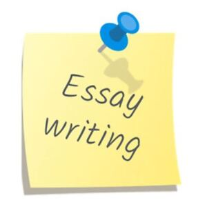 Paper writing service (Money back if you are not satisfied)