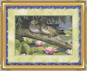 Wood Duck Cross Stitch Patterns
