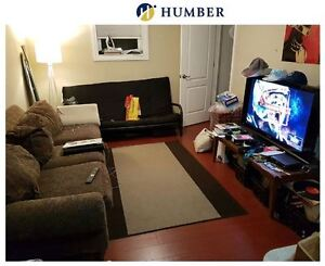 Humber Lakeshore Student  - Looking for Room to Rent -MUST SEE