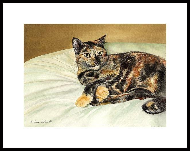 MECCA - TORTOISE SHELL CAT  FRAMED MINI CAT ART PRINT