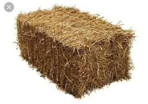 Straw Bales - Halloween Decoration / Seasonal Outdoor Decor