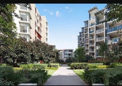Two bed apartment in Balgowlah over new year