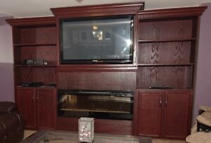 Large Entertainment Wall Unit w/ Fireplace