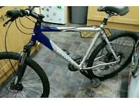 Upgraded 24 speed Dawes mountain bike