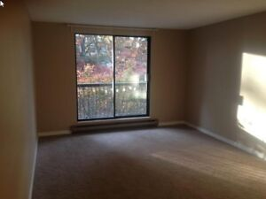 Apartments condos for sale or rent in richmond kijiji - Looking for one bedroom apartment for rent ...