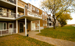 Spacious2 Bedroom Apartment | Available Jan 1st