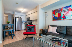 BEAUTIFUL 1 BDR + Den Apt./condo for rent July 1st. Must See!