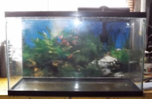 USED 29 Gal. FISH Tank FOR SALE - Great for CHRISTMAS!!!