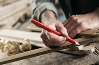 Professional Skilled Carpenter with own tools