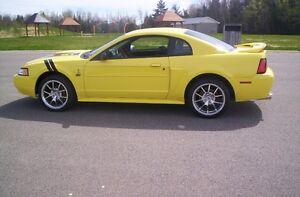 Mustang GT 4.6  show car