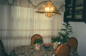 Dining Room Curtains - large window