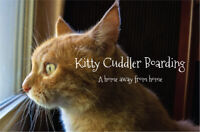 Kitty Cuddler Boarding - A Home Away From Home