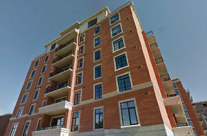 Luxury Civic Hospital/Little Italy Condo - Nov 1st
