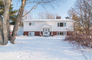 EXTENSIVELY RENOVATED UP/DOWN DUPLEX