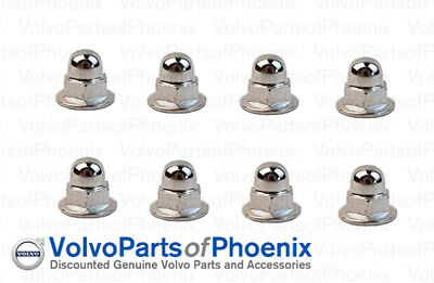 Genuine Volvo License Plate Mounting Nut Chrome Acorn Metric 6mm 8 pack NEW - License Mounting Plate