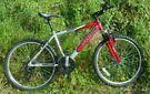 Python aluminium frame bike