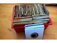 1100 + x 12'' + 7''' Reggae, Ska, Dancehall, Funk, Soul, Disco, Folk, Record Collection