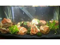 Aquarium / fish tank rocks